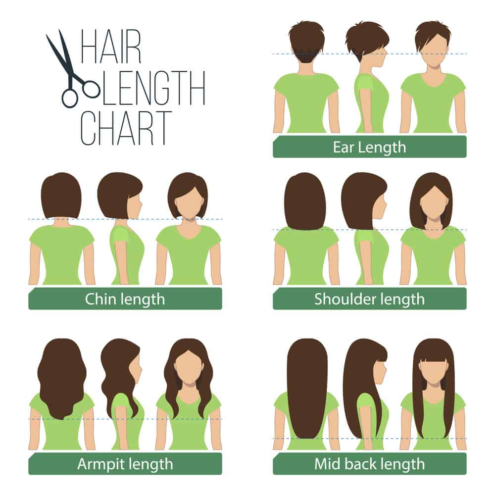 Women's hair length chart - Illustrated