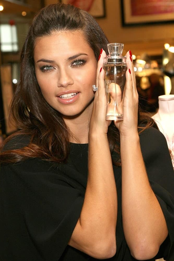Adriana Lima was at the Victoria's Secret Dream Angels Wish Fragrance in New York last October 21, 2008. She was wearing a simple black blouse that is paired with a more casual half up hairstyle and simple make-up.