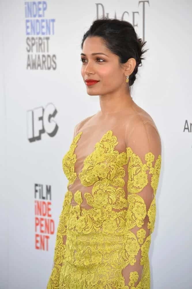 Freida Pinto's embroidered and sheer yellow gown matches well with her simple upstyle with a slight tousle during the 2017 Film Independent Spirit Awards.