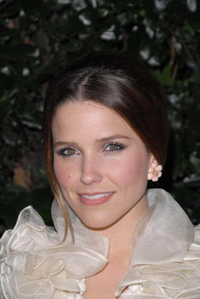 A fancy gown needs a fancy updo to keep up with. This hairstyle was worn by Sophia Bush at the 2011 Golden Globe Awards.