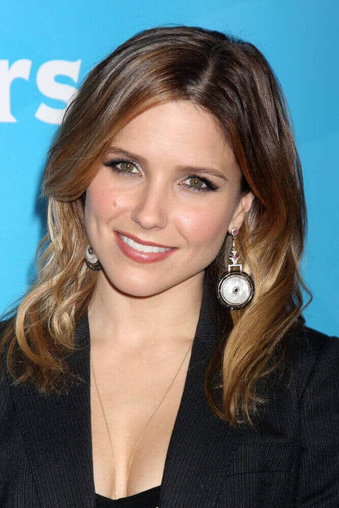 Sophia Bush in a Corporate Hairstyle.