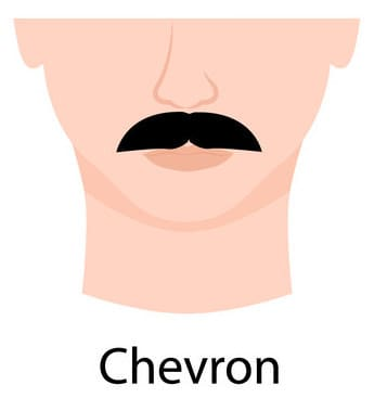 Chevron mustache example