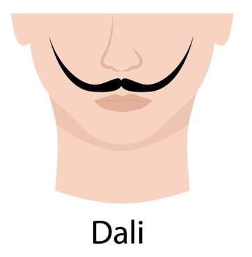 Dali style of mustache