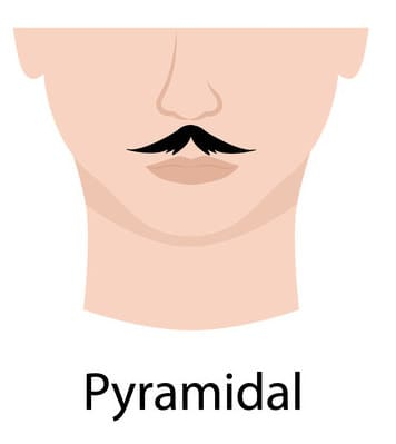 Pyramidal style of mustache