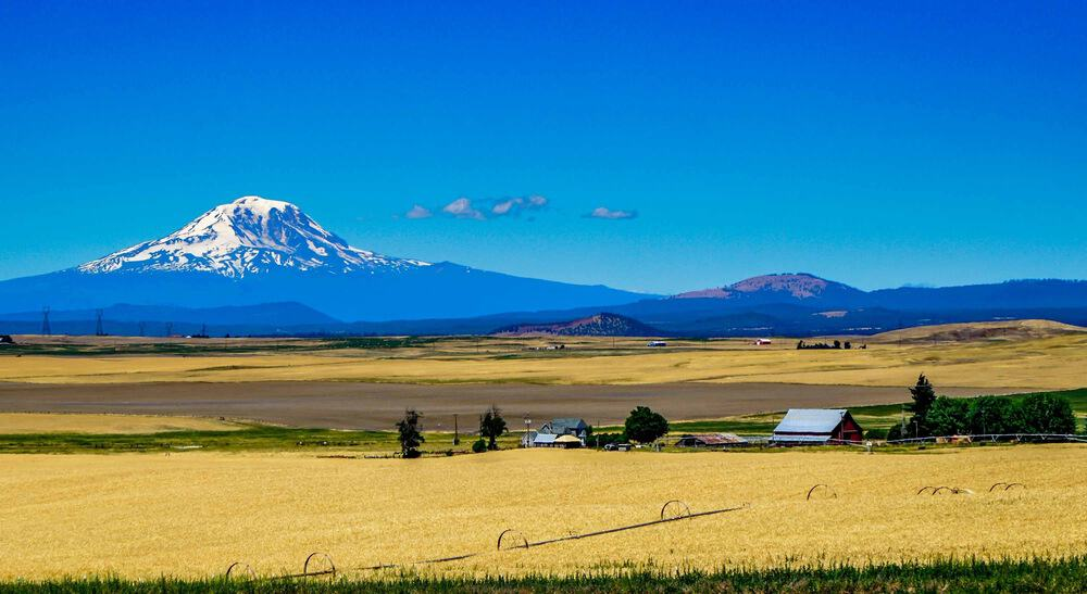 Mt .Adams near Yakima, Washington.