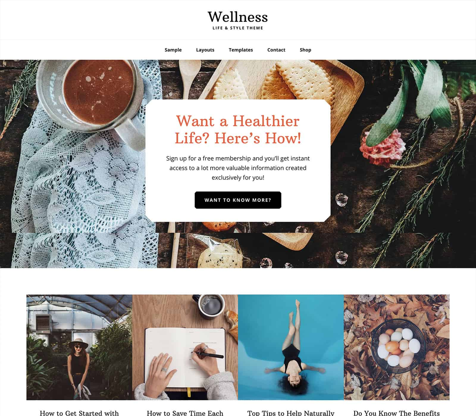 Wellness Pro theme for hair salons