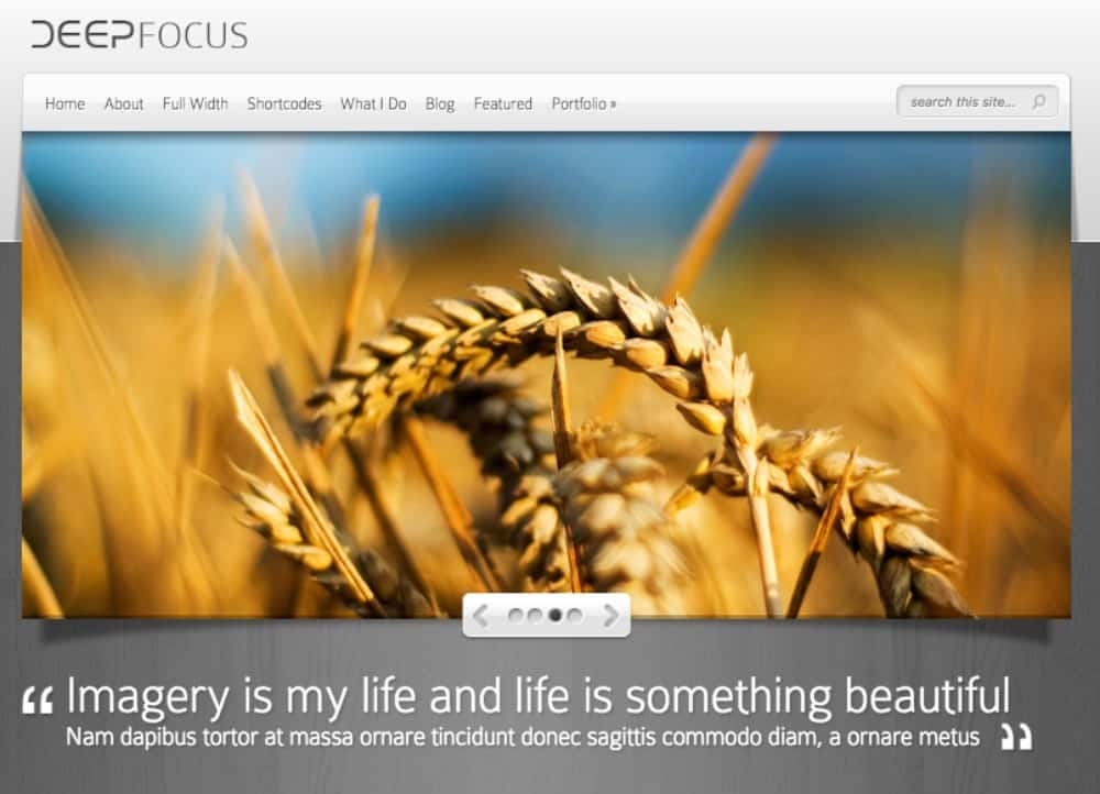 DeepFocus theme for hair salons