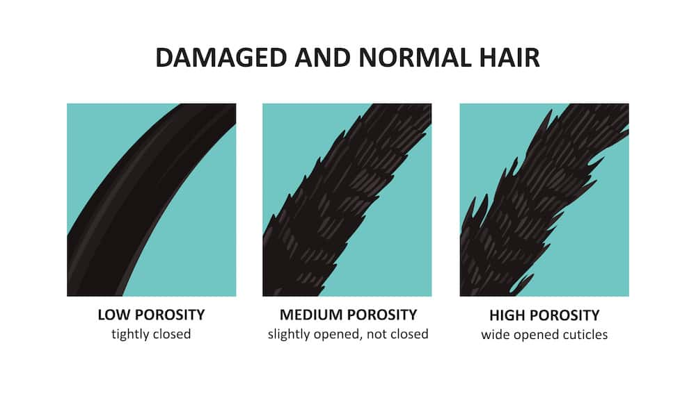 Chart showing different types of hair damage