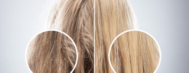 Hair damage comparison photo