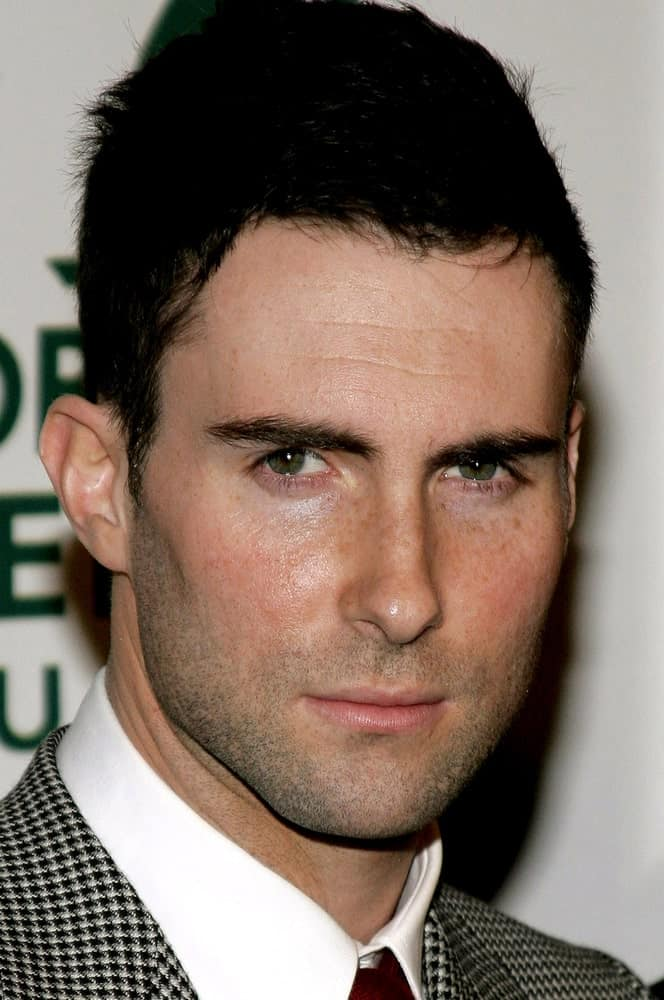 Adam Levine of Maroon 5 attended the Global Green Pre-Oscar Celebration to Benefit Global Warming held at the The Avalon in Hollywood, California on February 21, 2007. He wore a fashion forward suit with his spiked crew cut hairstyle.