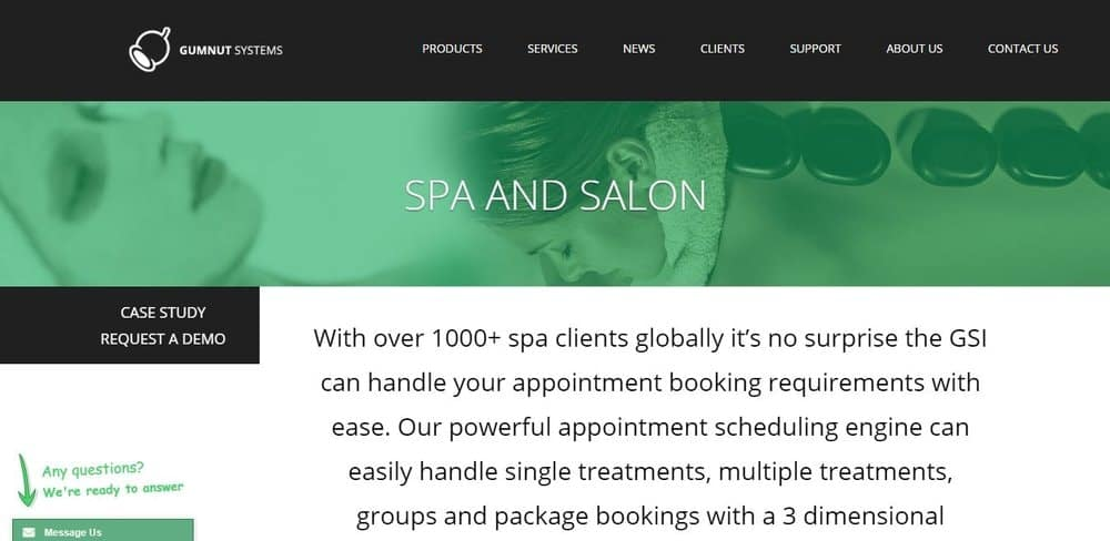 Screenshot of the site homepage for GSI Salon-Spa scheduling software.