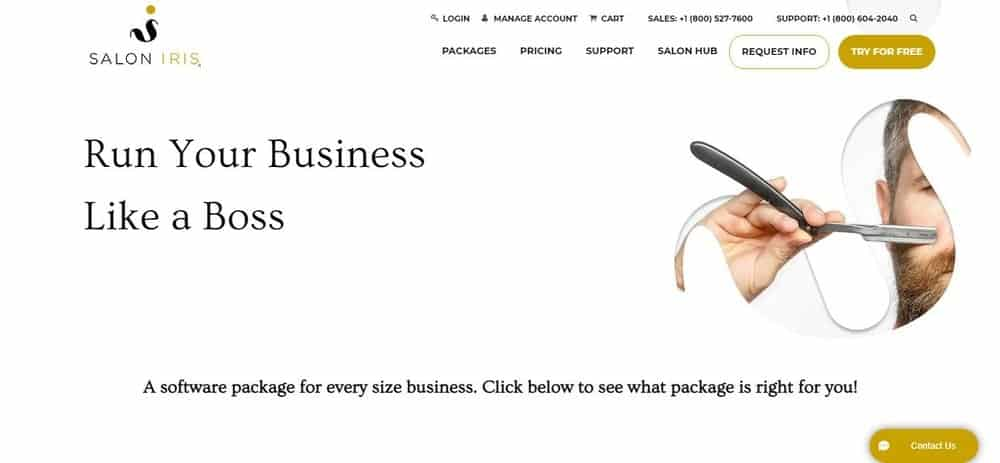 Screenshot of the Salon Iris Software Homepage.