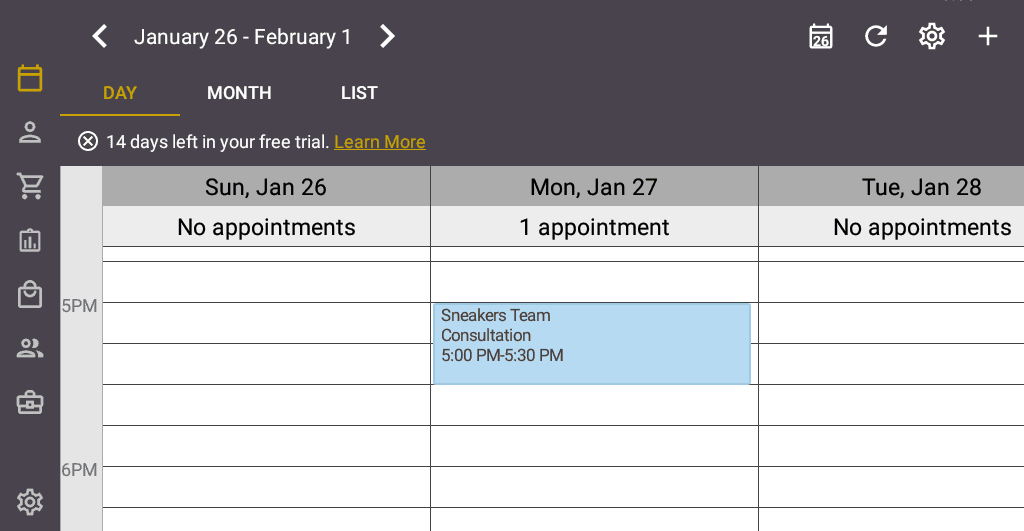 Screenshot of the Salon Iris Software Calendar of Appointments.