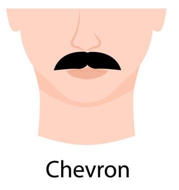 Illustration of a Chevron Moustache.