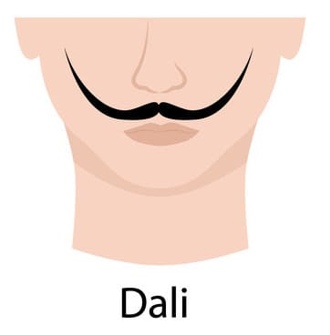 Illustration of a Dali Moustache.