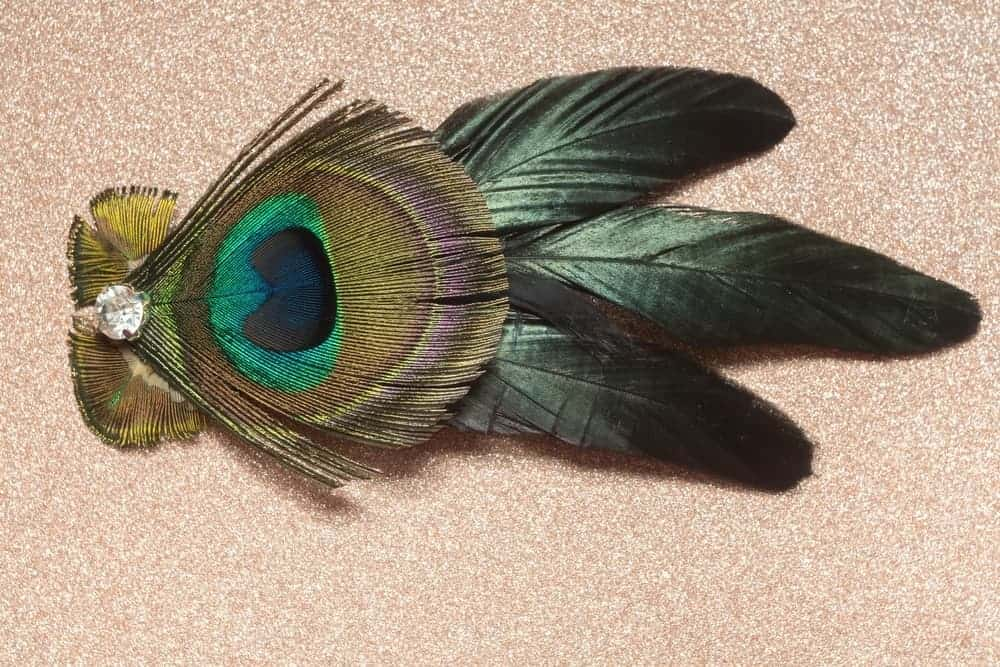 Hair clip embellished with feathers and zircon.